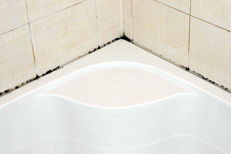 черная плесень на плитке в ванной