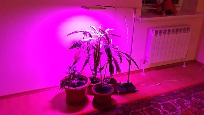 Лампа для грунта и цветов