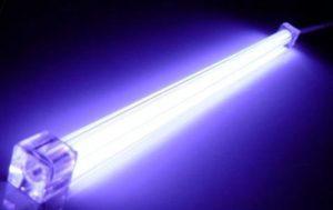 Влияние ультрафиолета на грибки