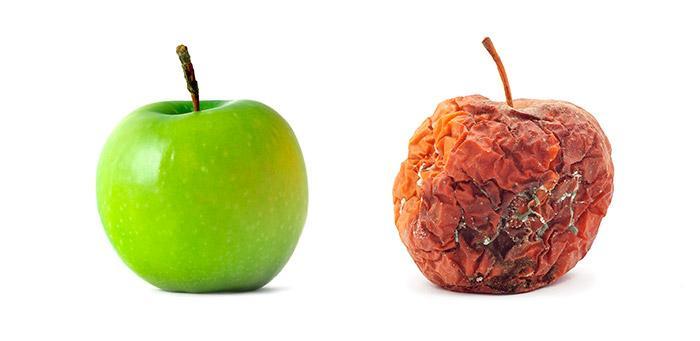 Плесень на яблоках