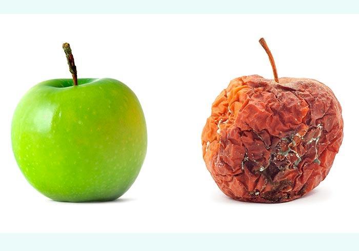 Яблоки с плесенью