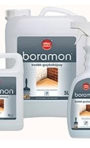 Boramon от плесени