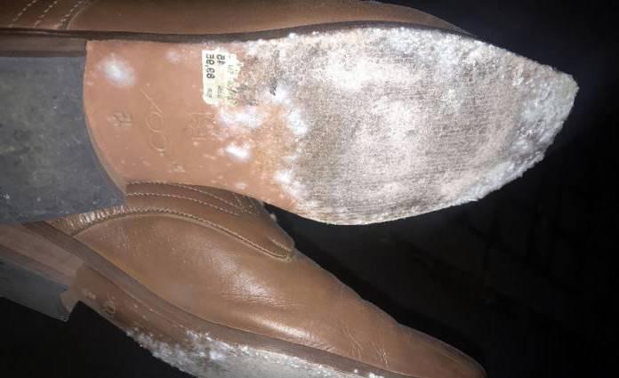 обувь в плесени