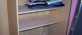 в шкафу с одеждой плесень